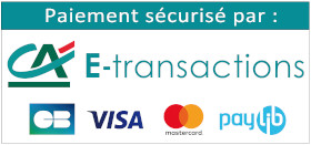 CA E-Transaction